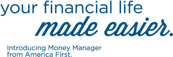 Money Manager Your Financial Life Made Easier